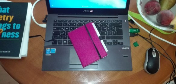 pinknotebook